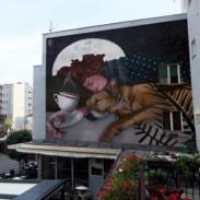 Novi Pazar, Izveden mural